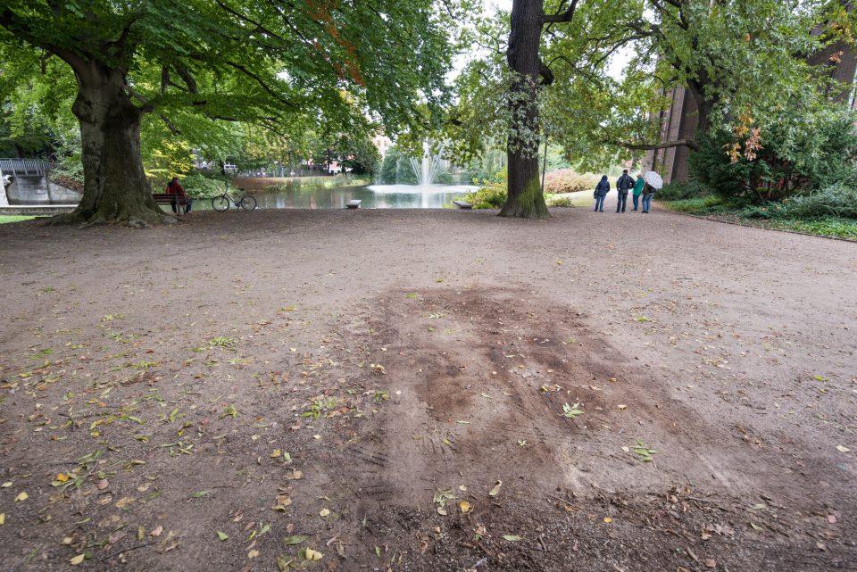Am 6. Oktober wurde das Kunstobjekt vom Amtsteich zum Zentralcampus der BTU Cottbus-Senftenberg umgesetzt, wo es nun für längere Zeit zu sehen ist.