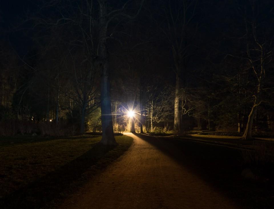 Branitzer Park bei Nacht